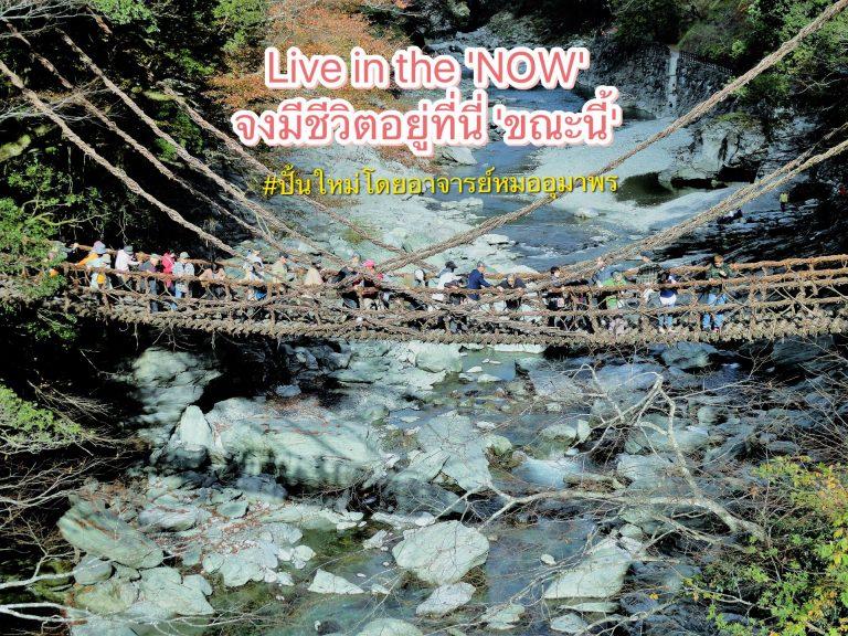 Live in the 'NOW' จงมีชีวิตอยู่ที่นี่